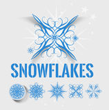 Snowflakes element Stock Images