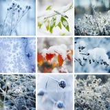snowflakes för snow för samlingsdesign övervintrar män inställda ditt Fotografering för Bildbyråer