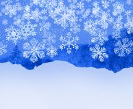 Snowflakes fall, ice texture, trees and snow background royalty free stock images