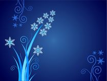 Snowflakes flower / christmas Stock Images