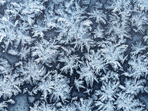 Snowflakes and frost on window pane close up Royalty Free Stock Images