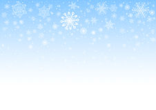 Snowflakes on a light blue background Stock Image