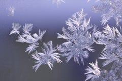 Snowflakes på fönster Royaltyfri Fotografi