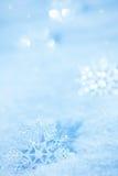 Snowflakes på snow Arkivbild