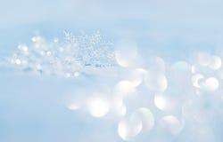 Snowflakes på snow Royaltyfri Bild