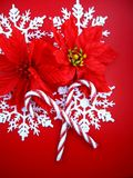 Snowflakes and poinsettias Royalty Free Stock Images
