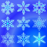 Snowflakes. Set of elements for design. Vector illustration. Beautiful blue snowflakes royalty free illustration