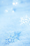 Snowflakes on snow Stock Photography