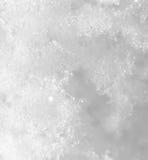 snowflakes supermakrosommar för 2009 blomma Fotografering för Bildbyråer