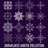 Snowflakes vector set Stock Photos