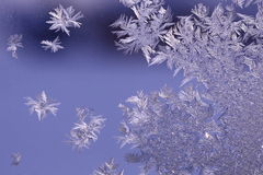 Snowflakes on the window glass Stock Images