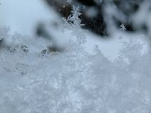 Snowflakes on the window. Perfect snowflakes stacking up against the window Stock Photography