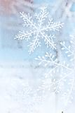 Snowflakes on the window Stock Image