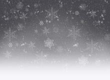 Snowflakes - winter background. Falling snowflakes - grey frozen winter background Stock Photos