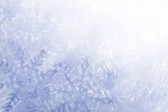 Snowflakesbakgrund Fotografering för Bildbyråer