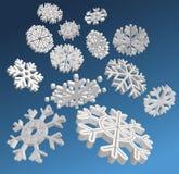 snowflakesvektor Arkivfoto