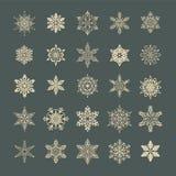 Snowflakeuppsättning Vektor Illustrationer