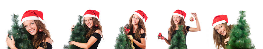 The snowgirl with fir tree isolated on white Royalty Free Stock Photos