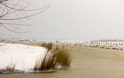 Snowice Στοκ Εικόνα