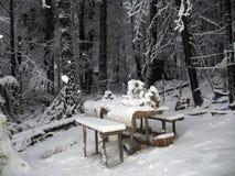 Snowing Arkivbild