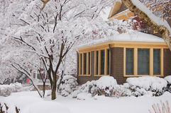 Snowing. It is snowing, snow covers tree and house with the star-apangled banner Royalty Free Stock Photography