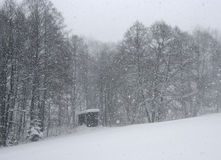snowing Stockbilder