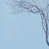 It is snowing. Decorative winter background with tree and snow Royalty Free Stock Photo