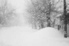 Free Snowing A Lot In The Lane Stock Image - 48404261
