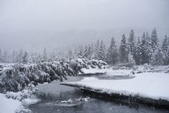 Snowing in  Alaska Royalty Free Stock Photography