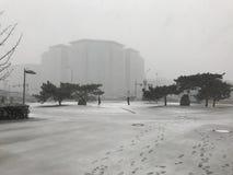 Snowing in Beijing Winter. Snowing Beijing Dongdan Lukou Orientatal Plaza in Beijing Royalty Free Stock Photo