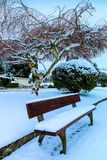 Snowing in the cemetery II Royalty Free Stock Photo