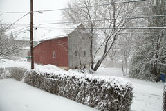 Snowing in Chalfont, Pa, USA Stock Photography