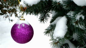 Snowing on the decorated trees Stock Image