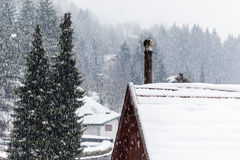 Snowing Stock Photography