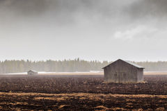 Snowing On The Fields And Barns Stock Images