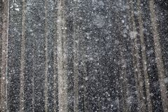 Snowing. In the forest. Winter atmosphere. and magic moments royalty free stock photo