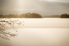 Snowing at a frozen lake with snowflakes gleaming in sunlight Royalty Free Stock Photo