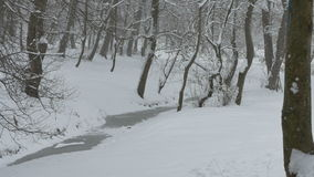 Snowing on Frozen Tiny River. View of snowfall in the forest stock footage