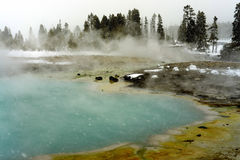 Snowing Geothermal geyser Yellowstone Wyoming Royalty Free Stock Image