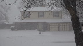 Snowing House Thru The Trees. Closeup of a suburban house getting heavy snow stock footage