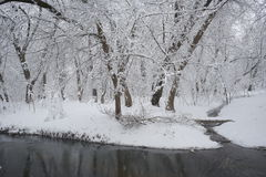 Snowing landscape. In the park Stock Photos