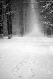 Snowing landscape in the park Royalty Free Stock Image