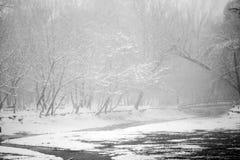 Snowing landscape in the park. Snowing, beautiful landscape in the park Stock Images