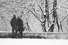 Snowing landscape in the park with lovers Royalty Free Stock Images