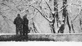Snowing landscape in the park with lovers Royalty Free Stock Image