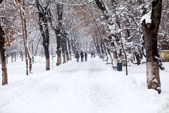 Snowing landscape in the park with people passing by Stock Photo