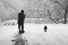 Snowing landscape in the park with person cleaning the alleys and dog Stock Photography