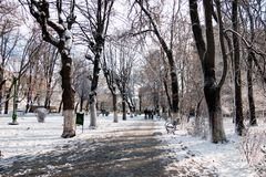 Snowing landscape in the park Stock Photo