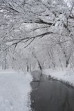 Snowing landscape in the park. In a beautiful sunny day Royalty Free Stock Photos