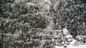 Really Really Snowing Loop stock footage